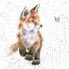 Artistic Greeting Card - Blank/Birthday - Born To Be Wild - Fox - Country Set Collection - Hannah Dale Fox Painting, Painting & Drawing, Butterfly Painting, Cute Animal Drawings, Cute Drawings, Cute Fox Drawing, Watercolor Animals, Watercolor Paintings, Watercolour