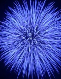Epic Fireworks - Blue Sky At Night Periwinkle Blue, Love Blue, Blue And White, Cobalt Blue, Blue Colour Images, Color Blue, Fireworks Pictures, Fire Works, Blue Aesthetic