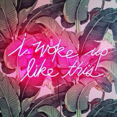 inspiration quote palm tree leaf print beverly hills hotel pink neon sign: i woke up like this