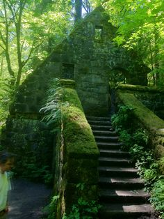 "Commonly known as the ""Witch's House,"" this is the remains of a Ranger Station and Bathroom built by the WPA in 1937. It was heavily damaged in the Columbus Day Storm and never repaired. It can be found by taking Lower MacLeay Trail in Portland Oregon's Forest Park."