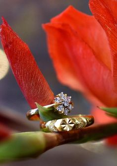 Rings with floral ornaments – Engagement Decoration Indian Engagement Photos, Engagement Rings Couple, Couple Rings Gold, Engagement Ring Photography, Indian Wedding Couple Photography, Photography Couples, Photography Backdrops, Indian Wedding Rings, Wedding Ring For Him