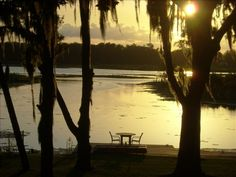 Cottage vacation rental in Crystal River from VRBO.com! #vacation #rental #travel #vrbo