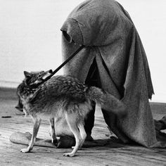 By performing self-invented rituals, Beuys belived that he could take on the role of a modern-day shaman, affect the world around him and heal a sick society and – if needed – create revolutionary change. (Would be interesting to discuss his views these days now that the world is more properly aware of issues surrounding appropriation.)