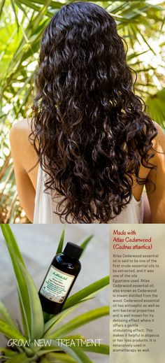 Encourage your hair to grow healthy without any harmful chemicals. The days of nasty chemicals on hair products are gone. There is a real fact that natural ingredients have amazing abilities to grow new hair and stop falling hair.