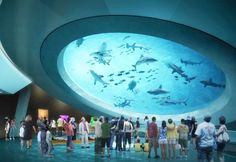 The Patricia and Phillip Frost Museum of Science in Miami will house a 500,000 gallon aquarium replicating the Gulf Stream.