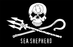 Fly Sea Shepherd Conservation Society's Jolly Roger Flag to let others know you help protect the ocean. Jolly Roger Flag, Marine Flag, Labrador, Sea Shepherd, Save The Whales, Marine Conservation, Wildlife Conservation, Marine Life, Fishing Boats