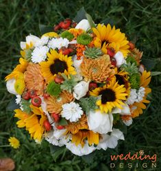 Image result for különböző virágokból csokor Weed, Plants, Image, Marijuana Plants, Plant, Planets