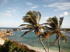 Photos: Beaches, Islands, and Surf Spots in Turks & Caicos, Jamaica and Barbados