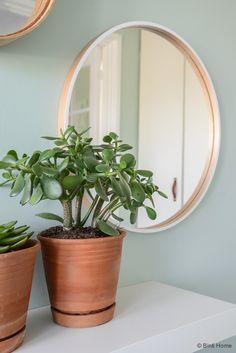 Groen in huis stylingtip planten in de hal Binti Home Blog ©BintiHome