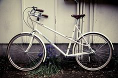beautiful wooden handle grips. sweetpea bicycles.