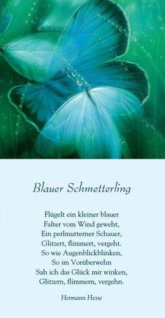 """#Sinnbild der Woche - Nr. 2                              Entnommen aus dem Buch """"Hundert Schmetterlinge schenk ich Dir""""                 Herausgegeben und mit Bildern von Friedrich Hechelmann"""
