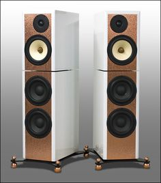 Salk Signature Sound - Exotica 3's customized to the max. Separate cabinets and copper on front baffles.