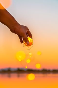 Incredible shot captured at sunset using a Lensball and a set of fairy lights. Visit Lensball to get your own crystal ball for creative styles of photography! Fairy Light Photography, Wide Angle Photography, Sunset Photography, Photography Tips, Artsy Photos, Cool Photos, Cute Girl Drawing, Crystal Ball, Fairy Lights