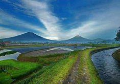Gunung Sumbing dan Gunung Sindoro,dilihat dari Temanggung Golf Courses, Country Roads, Blog