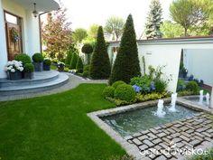 Lustro w ogrodzie - strona 5 - Forum ogrodnicze - Ogrodowisko