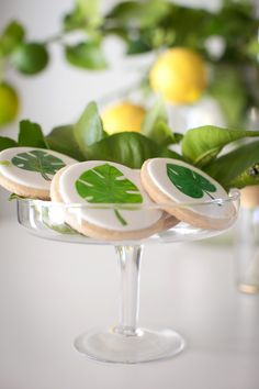 "Fern sugar cookies from ""Lemon"" the Good Life Birthday Party at Kara's Party Ideas. See all of the beautiful images at karaspartyideas.com"