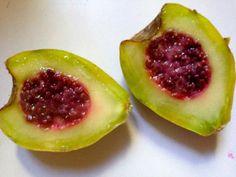Xoconostle, el fruto del desierto mexicano Cousin of the TUNA