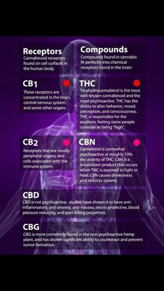 de9a639550a When you have a full spectrum CBD oil, you're not just getting CBD- you're  getting CBD, CBC, CBN, CBG- which all work synergistically together.