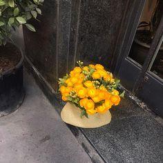 #인스타일_꽃을좋아하는너에게 오늘은 특별히! 조금 더 일찍! 패션위크가 열리고 있는 밀란에서 찍은 사진을 보여드릴게요.  여러분 오늘도 예쁜 꽃 사진보며 꽃길만걸으세요  -editor KMJ #꽃은언제나옳다 #꽃길만걷자 #flowerstagram #flower #fashionweek #mfw  via INSTYLE KOREA MAGAZINE OFFICIAL INSTAGRAM - Fashion Campaigns  Haute Couture  Advertising  Editorial Photography  Magazine Cover Designs  Supermodels  Runway Models