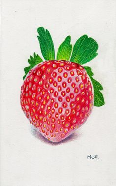 Strawberry colored pencil drawing on paper by DietrichsArt on Etsy