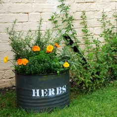 #herb #planter made from #recycled oil drum