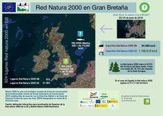 La salida del Reino Unido obligará a recomponer a las políticas de cambio climático en la Unión Europea, según explica a Efe el coordinador de políticas ambientales de la ONG española SEO/BirdLife, el británico David Howell.