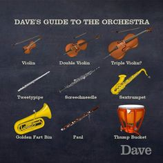 Orchestra guide