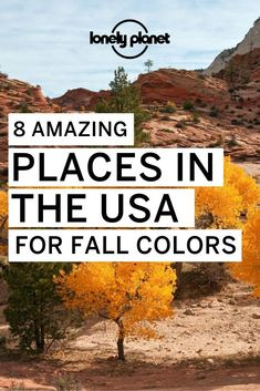 The best Places To See Vibrant Fall Foliage In The USA  because fall in the USA means stunning visuals Smoky Mountain National Park, Zion National Park, National Parks, Family Adventure, Adventure Travel, Multnomah Falls, Deciduous Trees, Usa Travel, Lonely Planet