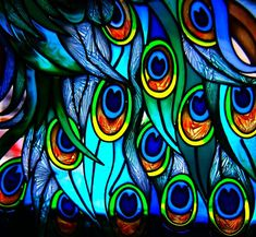 """""""stained glass peacock feathers"""" by bseed76 on Flickr - Stained Glass Peacock Feathers"""