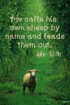 John Jesus, the Good Shepherd Psalm 133, Scripture Quotes, Bible Scriptures, Encouragement Scripture, Faith Quotes, Way Of Life, The Life, Jesus Reyes, Soli Deo Gloria