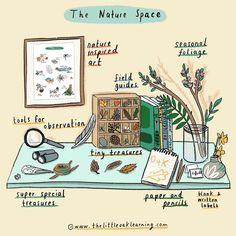 Nature Space Inspiration Pin on Homeschool Inspiration Nature Activities, Activities For Kids, Kindergarten, Exploration, Nature Table, Forest School, Nature Journal, Nature Study, Lectures