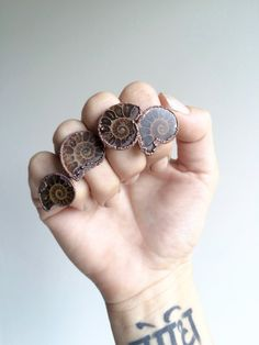 Ammonite fossil ring | Electroformed fossil jewelry | Raw organic fossil ring | Women or men's mineral ring