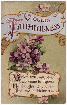 Violets stand for faithfulness in the Victorian Language Of The Flowers...