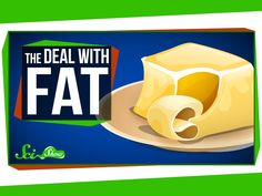 The Deal with Fat Dietary science is complicated-- one day something is good for you and the next it's not. Learn what we DO know about fat chemistry in this episode of SciShow.