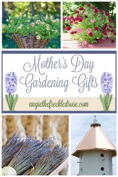 Transitioning The Garden | angiethefreckledrose.com