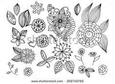 Set of flowers. Floral doodles.