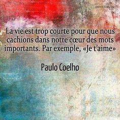 """""""La vie est trop courte pour que nous cachions dans notre cœur des mots importants. Par exemple, 'Je t'aime'"""" - [Paulo Coelho]"""