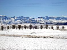 The Drakensberg mountains, covered in snow. The South Africa You've Never Seen - SkyscraperCity Kwazulu Natal, Out Of Africa, African Countries, Africa Travel, Beautiful Landscapes, Places To See, South Africa, National Parks, Scenery