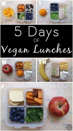 I took pictures of my son's packed lunches every morning for a week. Behold: a week of real life, totally doable packed lunches. based diet for kids school lunch A Week of Real-Life Packed Lunches for Back to School Vegan Lunch Box, Vegan Lunch Recipes, Vegan Lunches, Vegan Meal Prep, Vegan Foods, Vegan Dishes, Work Lunches, Vegan Lunch Healthy, Vegan Recipes For Kids