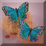 Checker Spot Butterfly - Turquoise