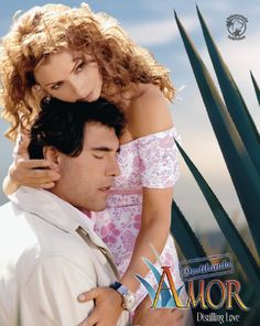 Destilando Amor (Novela) This Novela is the best- you got a guy who is strong and soft. Who could for get the beautiful Gaviota!