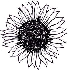 sunflower clipart black and white - Google Search
