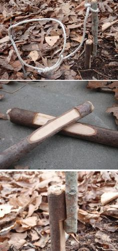 Just in case you get hungry out in the wild... | How to Build a Trap and 14 other survival tips.