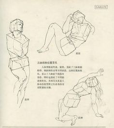 Anatomy for the Artist Human Anatomy Drawing, Anatomy Study, Gesture Drawing, Guy Drawing, Anatomy Art, Drawing Practice, Drawing Poses, Life Drawing, Train Drawing