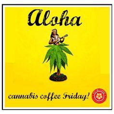 #Cannabis or #CBD #infused #coffee #tea #coco #California #Washington #Oregon #Nevada #Arizona #NewYork #Colorado #Alaska #Hawaii #Australia #Germany #Canada #420 www.potocoffee.coffee