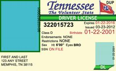 tennessee drivers license template.html
