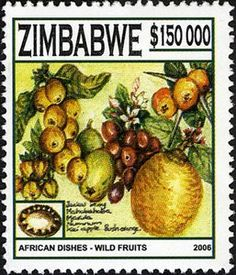 African dishes - Wild Fruits