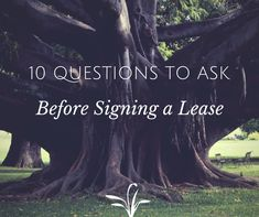 If you're renting an apartment for the first time, you might be too excited or anxious to dive right in, so you avoid asking any pertinent question.   Be sure to ask these 10 Questions Before Signing Your Lease!