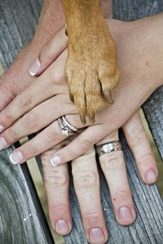 Super cute idea. His hand, her hand, the children's hands(biggest to smallest)and then the dogs:-)