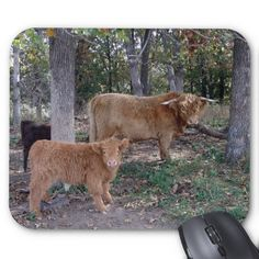 Father and Son Mouse Pads